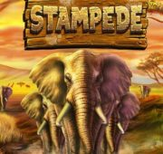 Stampede Pokie Betsoft