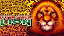 Ultra Stack Lion