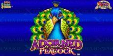 Adorned Peacock