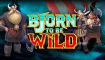 Bjorn to be Wild