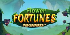 Flower Fortunes Megaways