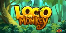 Loco the Monkey