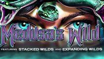 Medusa's Wild