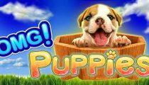 OMG! Puppies