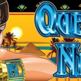 Queen of the Nile Aristocrat
