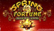 Spring Fortune Blooming Lotus