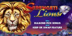 Serengeti Lions